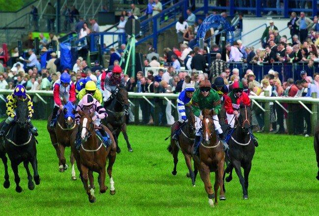 Horses racing at Beverley Racecourse