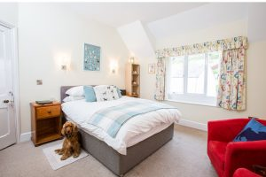Bed and dog – No expensive has been spared with Westleigh's home interiors