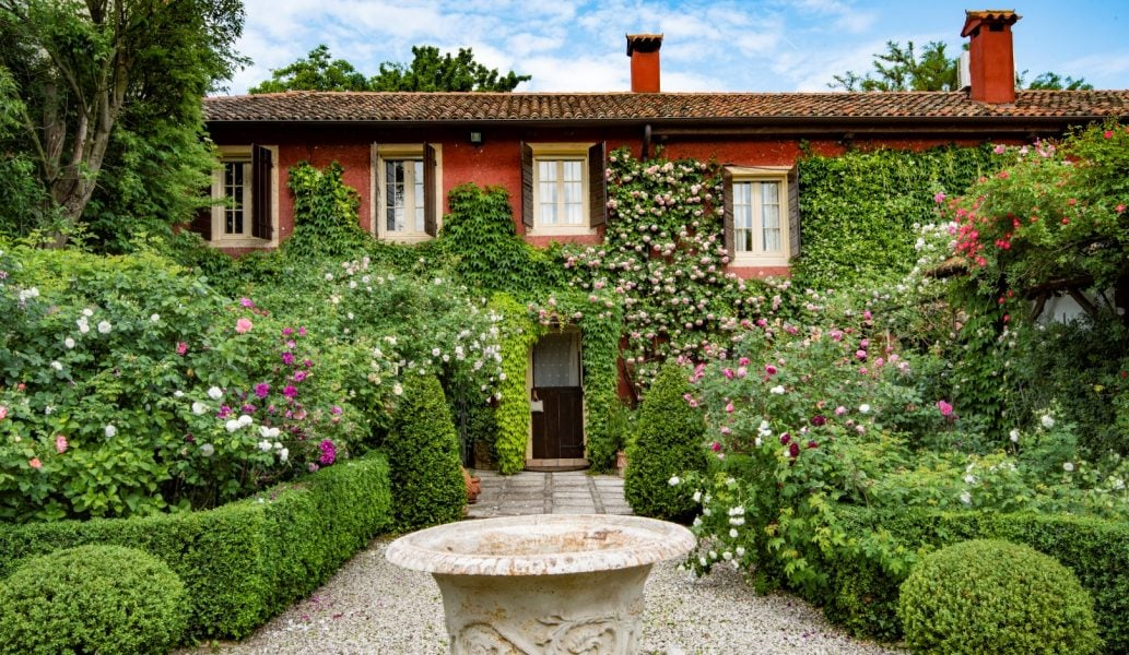 The fabulous rose garden at Ca' delle